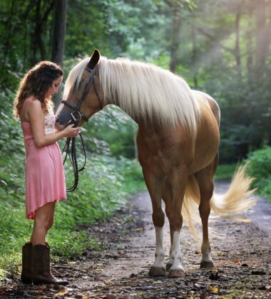 Top Tips For Getting Your First Horse