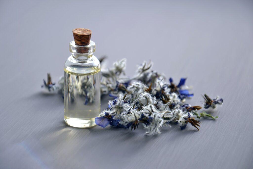 Best CBD Oil For Epilepsy: Buyer's Guide