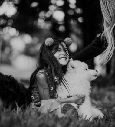 Having Fun With Your Pets: Making Dog Care A Breeze