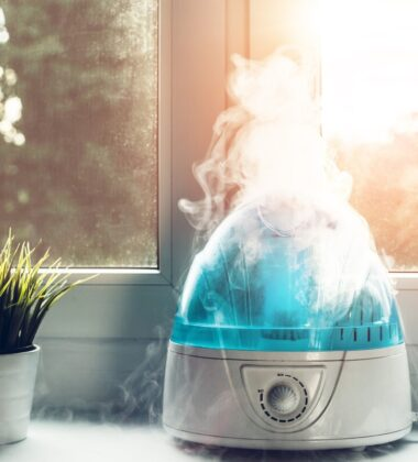 Why Use A Humidifier? These 11 Reasons Will Convince You