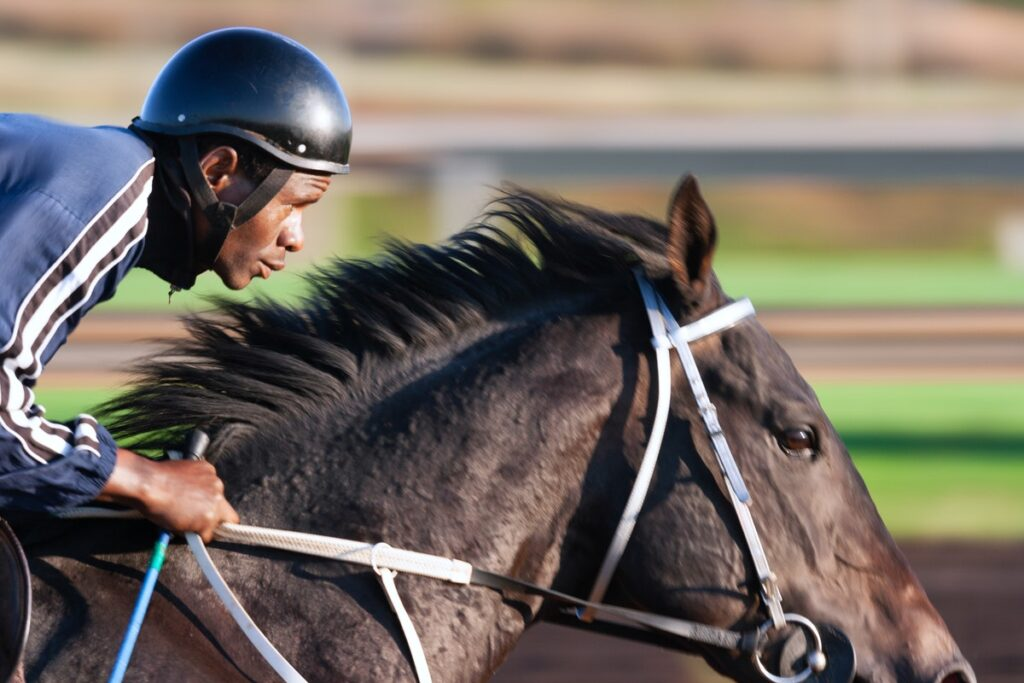 A Beginners Guide To Betting On Horse Racing