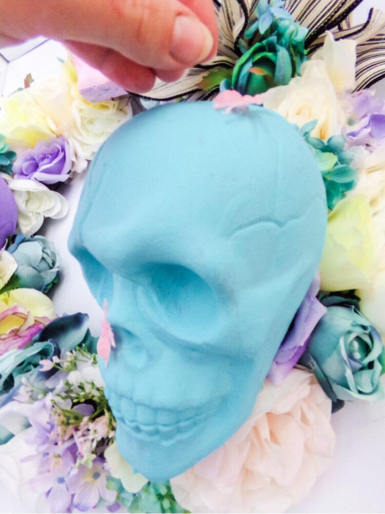 Putting bugs on plastic skull