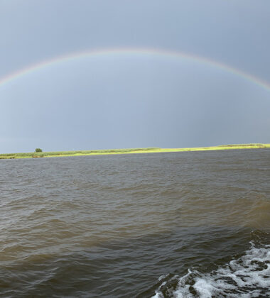Six Activities Travelers Are Clamoring To Enjoy Along SC's Hammock Coast In 2021