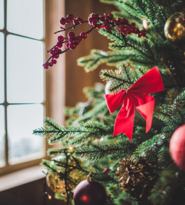 Top Ways To Get Into the Christmas Spirit