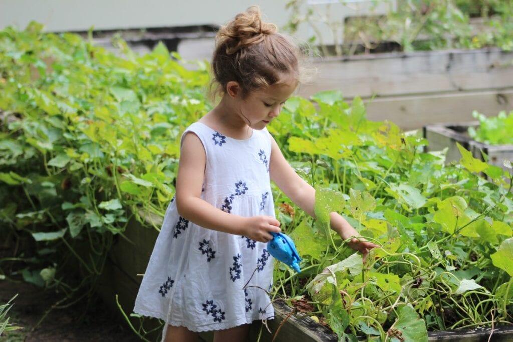How To Design A Kid-Friendly Garden