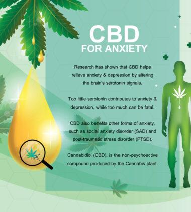 Can Medical Marijuana Manage Anxiety?