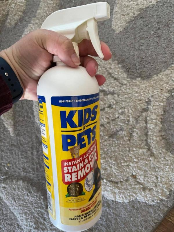 Tackling Life's Stains and Odors With KidsNPets