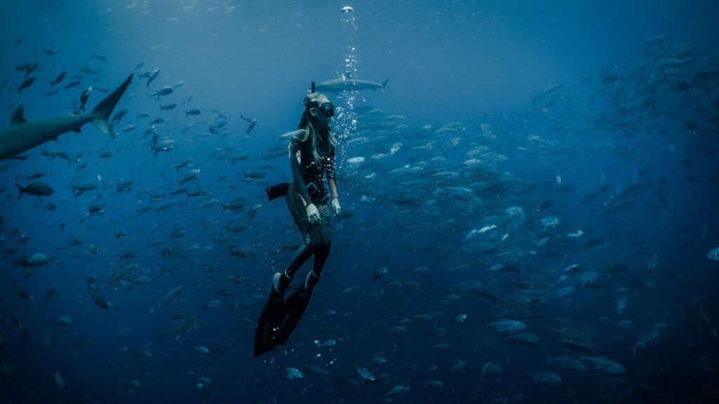 Enjoy A Week-Long Program In The Galapagos