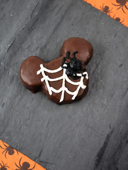 spider on brownie